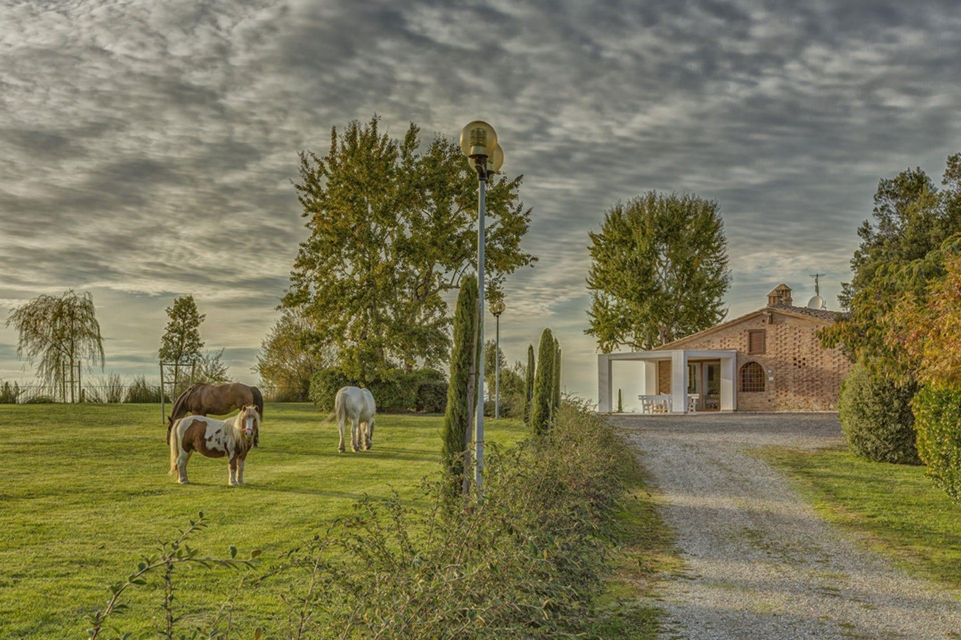 Ferienwohnung Toskana mit hund